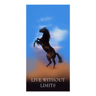 Motivational Rearing Horse Live Without Limits Poster