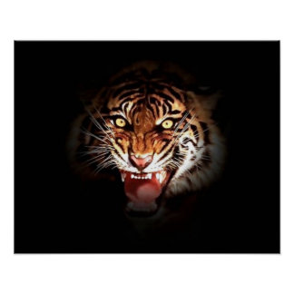 Motivational Roaring Tiger in Shadow Poster Print
