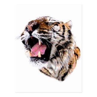 Motivational Tiger Face Postcard