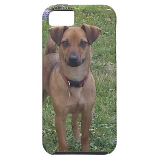 Motley Moe iPhone SE/5/5s Case
