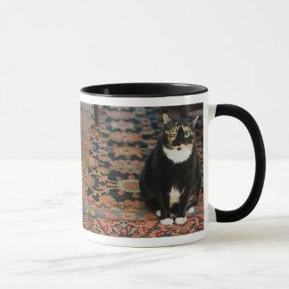 Motley Mug