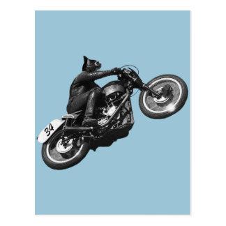 motocicleta divertida del vintage del gato tarjeta postal