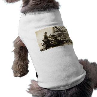 Motor #139 1893 de la aurora del ferrocarril de Bu Playera Sin Mangas Para Perro