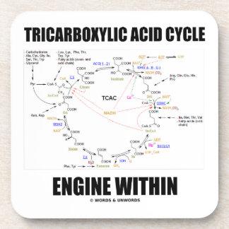 Motor del ciclo de ácido tricarboxílico dentro del posavasos de bebida
