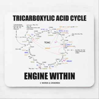 Motor del ciclo de ácido tricarboxílico dentro del tapete de ratón