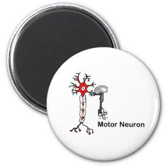 Motor Neuron Magnet