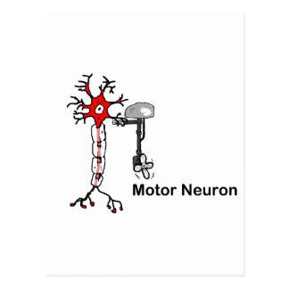 Motor Neuron Postcard