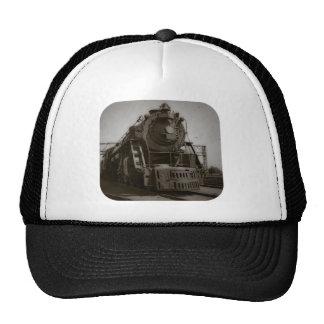 Motor occidental #6335 del tronco magnífico gorra