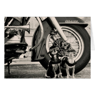 Motorcycle Dogs Greeting Card