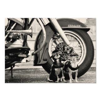 Motorcycle Dogs Card