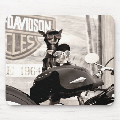 Motorcycle Dogs Mouse Pad