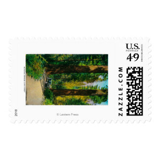 Motoring Through Giant Forest, Redwoods Stamps