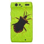 Motorola Razr, Barely Insectos Motorola Droid RAZR Carcasa
