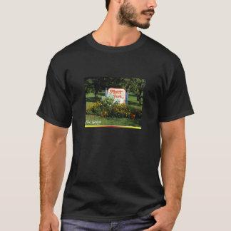 mott park - Flint Michigan T-Shirt