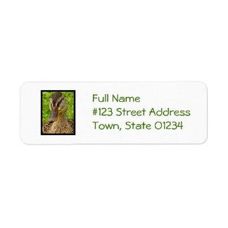 Mottled Duck Custom Return Address Label