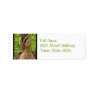 Mottled Duck Custom Return Address Labels