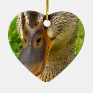 Mottled Duck Christmas Ornaments