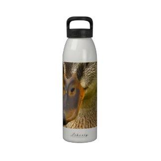 Mottled Duck Drinking Bottle