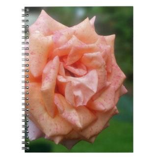 Mottled Peach Rose Flower Nature Notebook