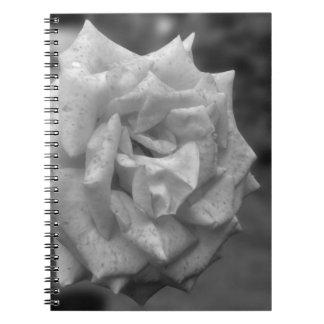 Mottled Rose Flower In BW Notebook