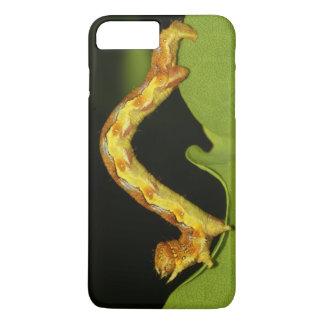 Mottled Umber as a Caterpillar Erannis Defoliaria iPhone 8 Plus/7 Plus Case