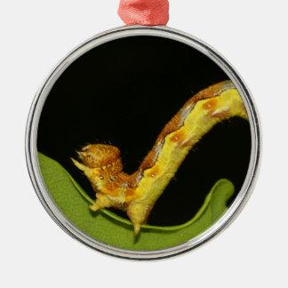 Mottled Umber as a Caterpillar Erannis Defoliaria Christmas Ornament