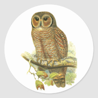 Mottled Wood Owl Classic Round Sticker
