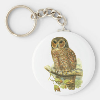 Mottled Wood Owl Keychains