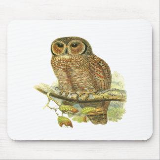 Mottled Wood Owl Mousepad