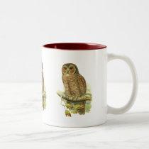 Mottled Wood Owl Two-Tone Coffee Mug