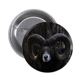 Mouflon Pin