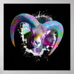 Mouflon Ovis orientalis Poster