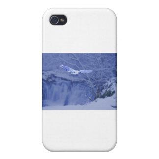 Moulton Falls Washington - Snowy Owl Spirit Cover For iPhone 4