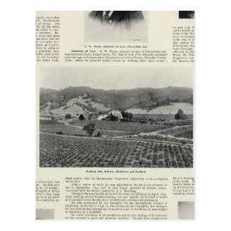 Moulton Hill Winery, California Postcard