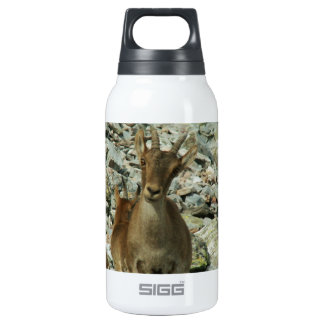 Mounain Goats In Castille Insulated Water Bottle