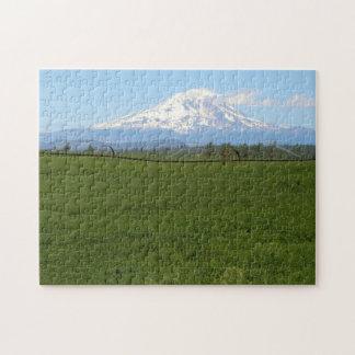 Mount Adams Puzzle