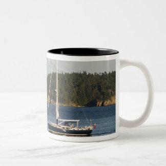 Mount Baker dominates landscape 2 Coffee Mugs