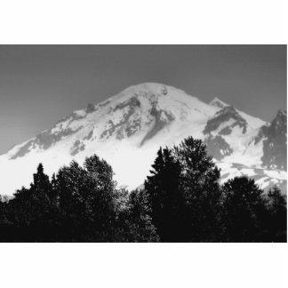 Mount Baker Through Trees Standing Photo Sculpture