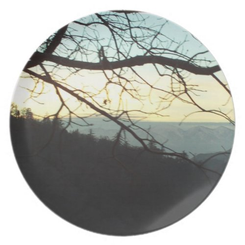 Mount Baldy Through The Trees Plate fuji_plate