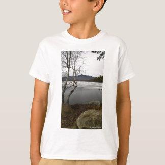 Mount Chocorua In Spring T-Shirt