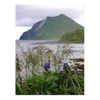 Mount Coxcomb, Unalaska Island Postcard