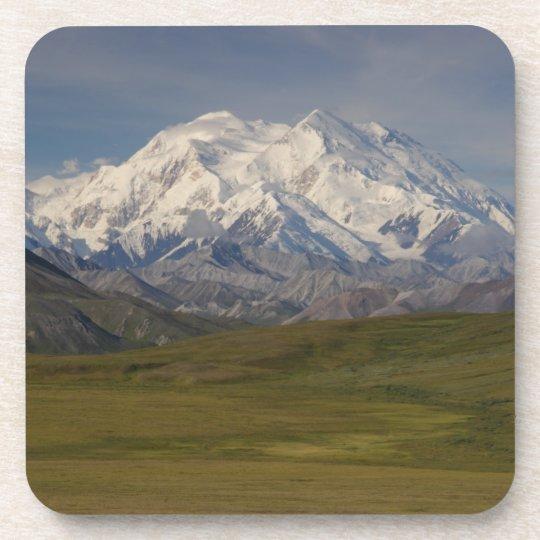 Mount Denali Coaster