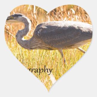 Mount Desert Great Blue Heron Heart Sticker