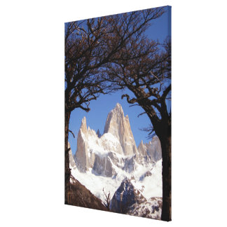 Mount Fitz Roy Framed by Trees, Patagonia Canvas Print