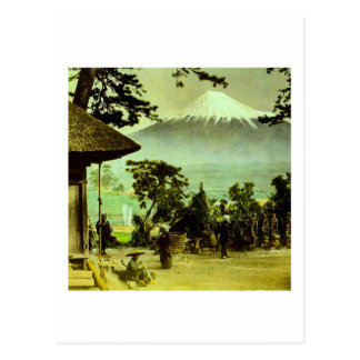 Mount Fuji through the Pines of Suzukawa Vintage Postcard