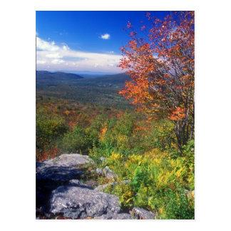 Mount Greylock Round Rock Vista Postcard