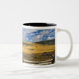 Mount Haggin NWR near Anaconda Montana Two-Tone Coffee Mug