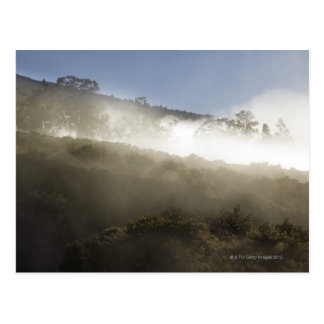 Mount Haleakala, Maui, Hawaii, USA 2 Postcard