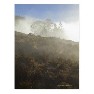 Mount Haleakala, Maui, Hawaii, USA Postcard