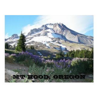 Mount Hood, Oregon Travel Photo Postcard